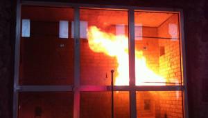 Выбор стеклянных противопожарных дверей