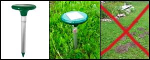 Как защитить свой огород от кротов и земляроек