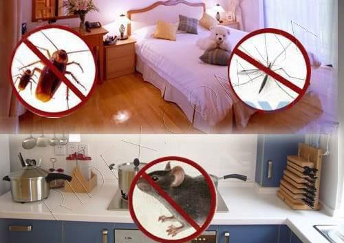 как использовать ультразвуковой отпугиватель насекомых
